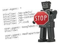 robots.txt в OpenCart и WordPress