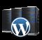 Проблемы с индексацией WordPress