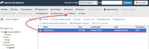 wp_ishodniki_raspakovka_fajlov