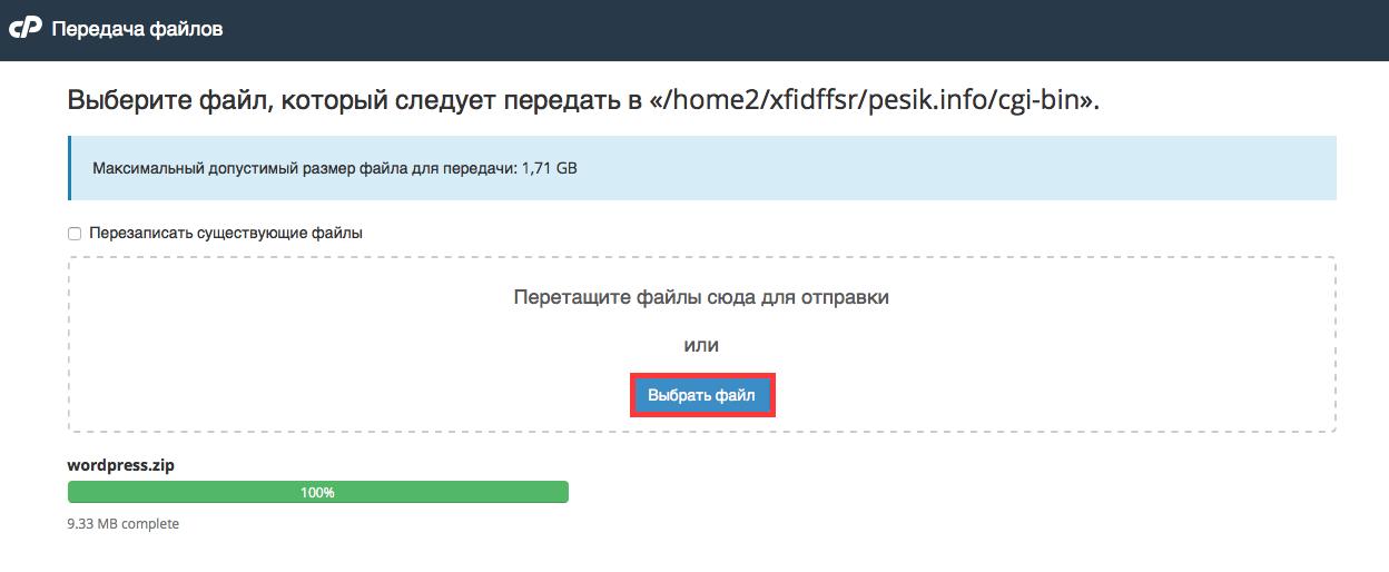 wp_ishodniki_rezultat_zagruzki